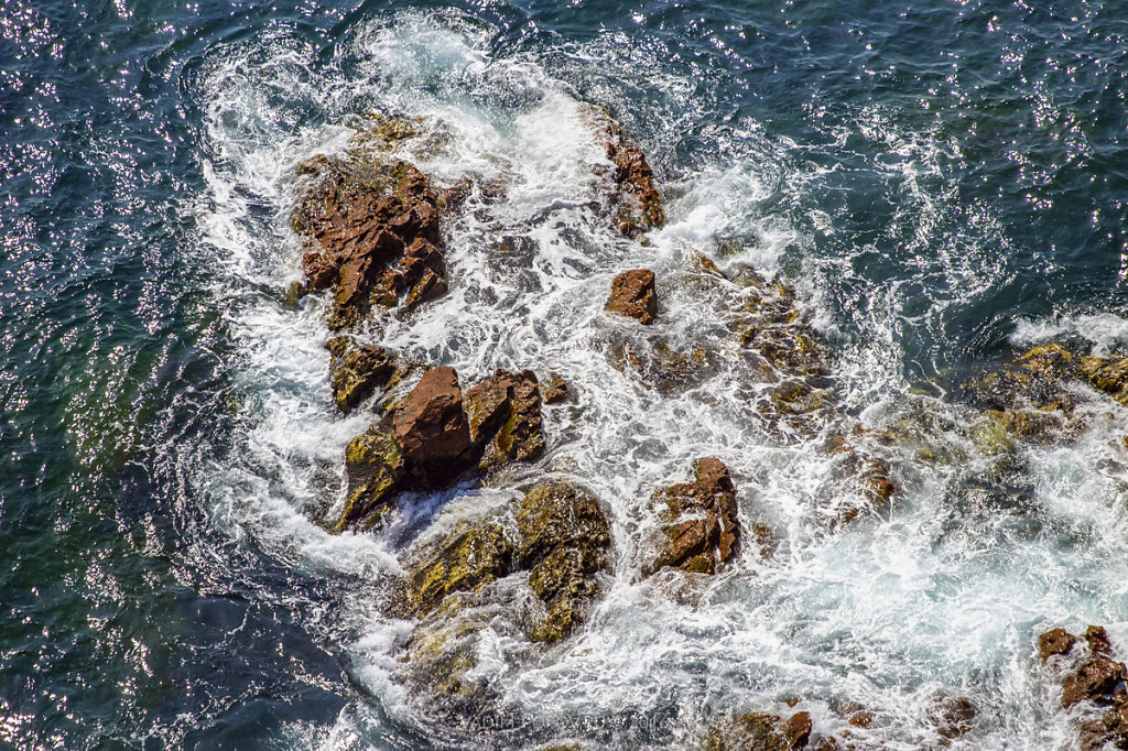Остров Шкота весной